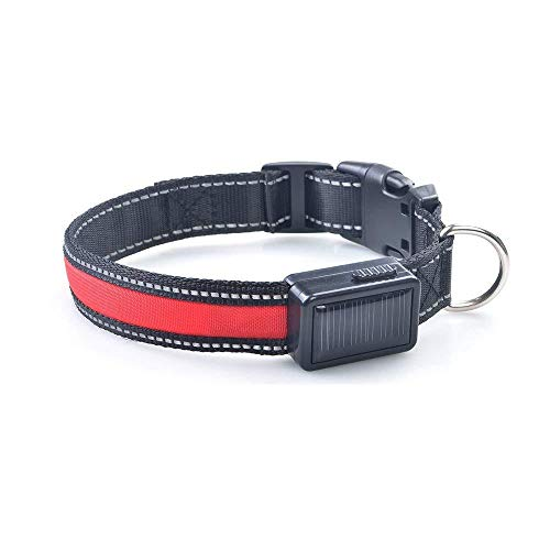 - Dog Dog Collars Harnesses & Leashes - Solar Power USB Charging Electronic LED Flashing Safe Nylon Dog Pet Collar for Different - Red L - 1 x Yani LED Dog Collar