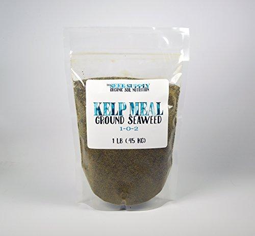1 Pound Maxicrop Organic Kelp Meal 1-0-2 Natural Norwegian Kelp Seaweed Fertilizer