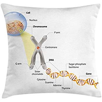 Ambesonne Educational Throw Pillow Cushion Cover, Cell Chromosome DNA Gene Genome Study Double Helix Evolution Science Research, Decorative Square Accent Pillow Case, 40
