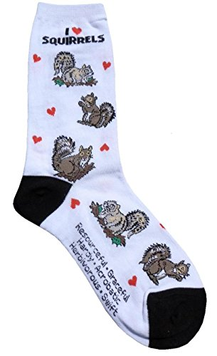 I love Squirrels Gift Collection (Women Cotton Socks)