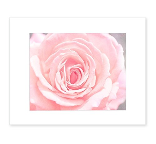 8x10 Matted Print, Pink Rose Flower Wall Art, 'Pink and Shabby'