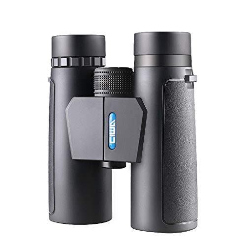 (Binoculars Double Tube HD Low Light Low Light Night Vision Non-Infrared Concert Outdoor 10 Times Telescope Durable Binoculars)