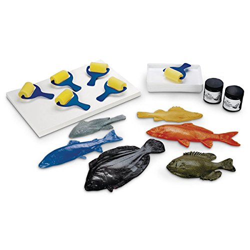 Nasco 9716660 Gyotaku Fish Printing Classroom Pack with Six Different 9'' to 13'' Fish Replicas, Paper, Ink and Brayers