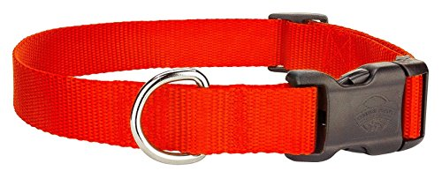 Scott Adjustable Hot Orange Rib Orange Dog Collar Size: Large 12