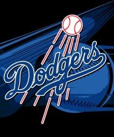 y Los Angeles Dodgers 50x60 inches Royal Plush Raschel Throw Blanket ()