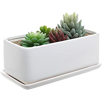 Amazon Com 10 Inch Rectangular Modern Minimalist White