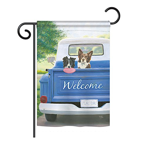 - Breeze Decor G160126 Play Day with Buddy Nature Pets Impressions Decorative Vertical Garden Flag 13
