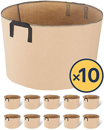 iPower 20-Gallon 10-Pack Grow Bags Fabric Aeration Pots Container with Strap Handles for Nursery Garden and Planting(Tan) (Best Plants To Grow In Pots Outdoors)
