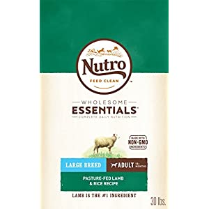 NUTRO WHOLESOME ESSENTIALS Adult Large Breed Natural Dry Dog Food - Lamb 93