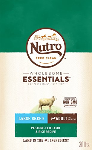 The Best Nutro Natural Large Breed Adult Dog Food Lamb