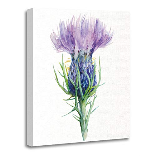 (Emvency Canvas Wall Art Print Liver Purple Scottish Milk Thistle Flower Watercolor Painting White Artwork for Home Decor 12 x 16 Inches)