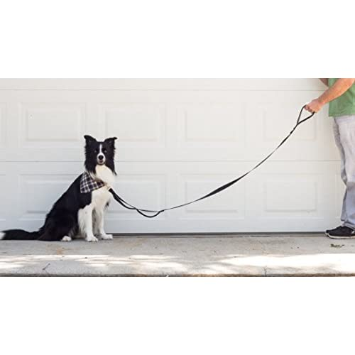 Leashboss 3X - Two Handle Dog Leash with Extra Traffic Handle - Heavy Duty Double Padded Handle Lead for Walking and Training Large Dogs - 6 Foot - Black delicate