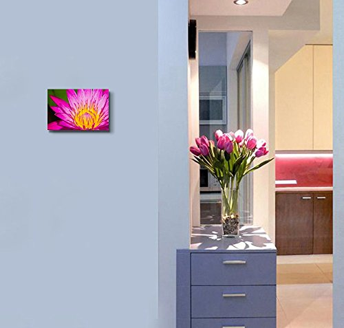 Close Up of Pink Lotus Flower in a Pond Wall Decor