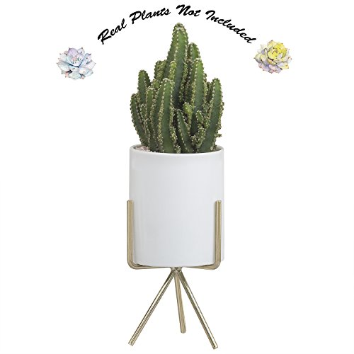 Desktop Planter Pot with Stand, 6.5'' H Modern Minimalist Indoor Triangle Metal Holder with White Round Ceramic Flower Pot for Succulents Air Plants Small Cactus Herb Fern Bonsai by Ebristar - Big by Ebristar