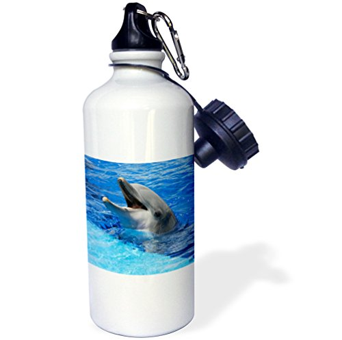 3dRose wb_37745_1 ''Dolphin with its mouth open at Oceanographic Aquarium in Valencia, Spain'' Sports Water Bottle, 21 oz, White by 3dRose