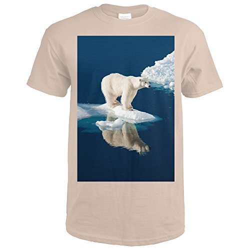 Polar Bear and Reflection (Sand T-Shirt X-Large) (Sand Reflections)