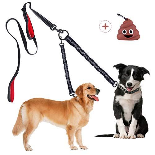 Great leash!
