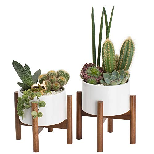 - 2 Pack Mid Century Modern Succulent Planter Tabletop | 5 Inch Pot with Wood Stand and Hidden Saucer | Round White Ceramic Planters | Shelf Decor Pots | Cactus & Plant Container with Drainage Indoor
