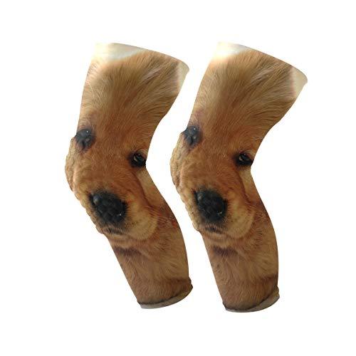 (Knee Sleeve Golden Retriever Cute Pet Full Leg Brace Compression Long Sleeves Pads for Meniscus Tear, Arthritis, Running, Workout, Basketball, Sports, Men and Women 1 Pair)