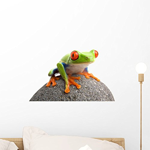 Wallmonkeys Frog Rock Wall Decal Peel and Stick Graphic (18 in W x 12 in H) ()