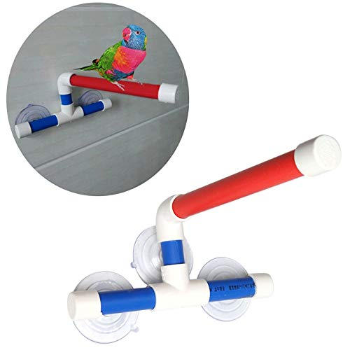 New Design Pet Parrot Toy Folding Bath Shower Standing Platm Suction Cup Bird Toys C42, Bird Perch Cups - Shower Perch For Bird, Rack Shelf In Pet Supplies, Star Shower In Pet Supplies by KLING'S