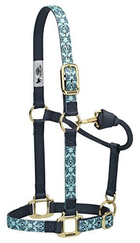 Weaver Leather Damask Adjustable Nylon Horse Nylon Horse Halter, Large, Mint/Gray ()