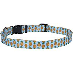 "Yellow Dog Design Pineapples Blue Dog Collar, Medium-3/4 Wide fits Neck Sizes 14 to 20""/4"" Wide"