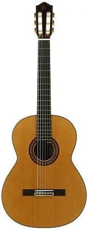 JOSE TORRES JTC-100: Amazon.es: Instrumentos musicales