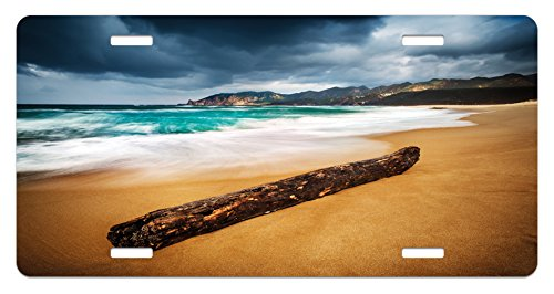 Ambesonne Driftwood License Plate, Seascape Theme with Old Piece of Tree in The Beach with Stormy Weather Print, High Gloss Aluminum Novelty Plate, 5.88 L X 11.88 W Inches, Blue and Ginger