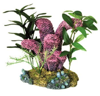 Exotic Environments Lavender Cat's Paw Coral With Plants (Blue Ribbon Coral Cats)