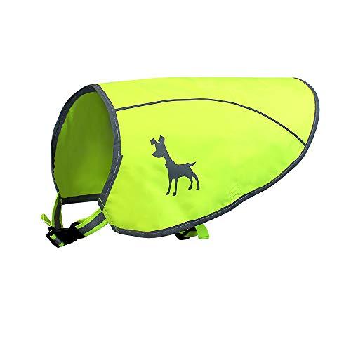 Flexi Alcott Essentials Visibility Dog Vest, Medium, Neon