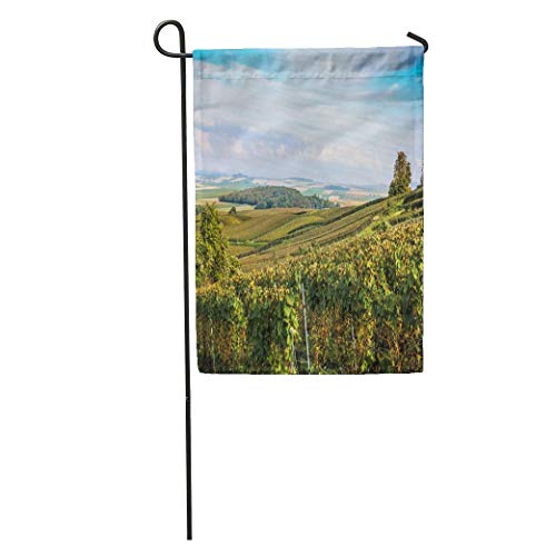 zhurunshangmaoGYS Garden Flag Green View of Wine Field and Grape in Champagne Hill Home Yard House Decor Barnner Outdoor Stand 12x18 Inches Flag