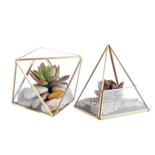 Whole Housewares Glass Geometric Terrarium Container 4.5X5.2 inch and 4.3X3.7 inch Glass Terrarium for Succulent & Air Plant (Gold, 2pcs) ()