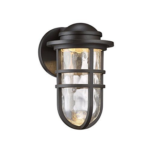 Cheap WAC Lighting WS-W24509-BZ Steampunk 9″ LED Outdoor Wall Light Fixture, Small, Clear/Bronze