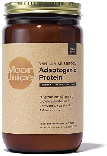 Moon Mushrooms - Moon Juice - Organic Vanilla Mushroom Adaptogenic Protein (16 oz)