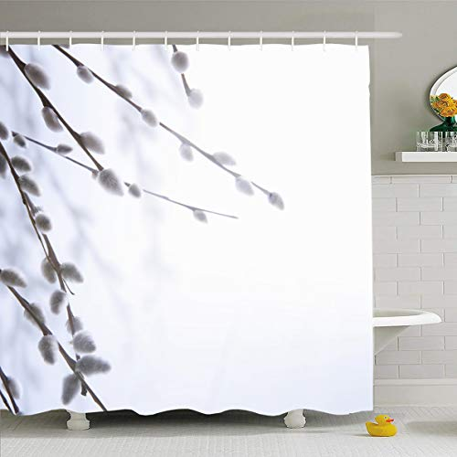 - Ahawoso Shower Curtain 66x72 Inches Holiday Pussy Spring Flowering Branches Willow Nature Flower March Tree Branch Grey Design Waterproof Polyester Fabric Set with Hooks