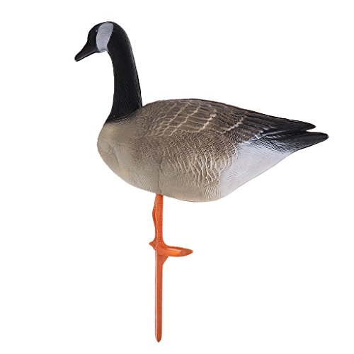 Goose Full Body (Fenteer Premium Lifelike Full Body Goose, Greenhand Hunting Decoy Lawn Decoration - Standing Goose)