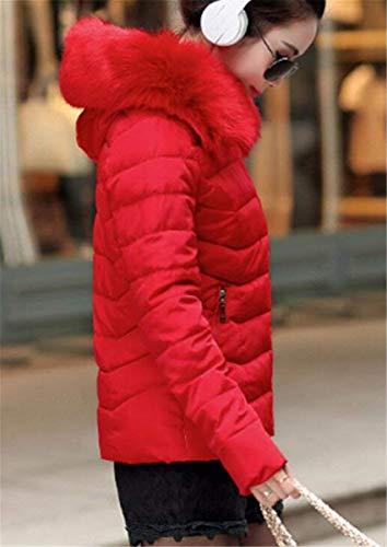 Colores Pluma Fit con Invierno Termica Sólidos Capucha Grandes Transición Cremallera Áspera Mujer Manga con Slim Acolchado Piel Abrigos Retro Tallas De Rot Largo Espesar Abrigo g7Onxwq0