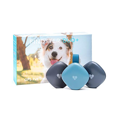 Findster Duo+ Pet Tracker Free of Monthly Fees - GPS Tracking Collar for Dogs and Cats & Pet Activity Monitor - Tracks 2 Pets from Findster