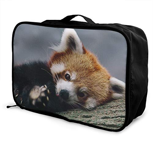 Lightweight Large Capacity Portable Luggage Bag Cute Red Panda Travel Duffel Bag Backpack