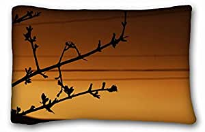 Soft Pillow Case Cover Nature Custom Cotton & Polyester Soft Rectangle Pillow Case Cover 20x30 inches (One Side) suitable for X-Long Twin-bed