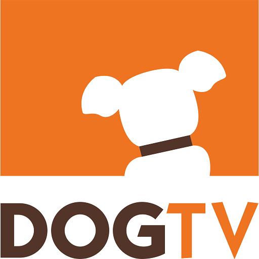 (DOGTV)