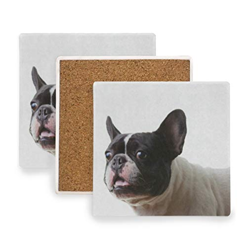 French Bulldog Coasters, Protection for Granite, Glass, Soapstone, Sandstone, Marble, Stone Table - Perfect Wood Coasters,Square Cup Mat Pad for Home, Kitchen or Bar 1 Piece]()