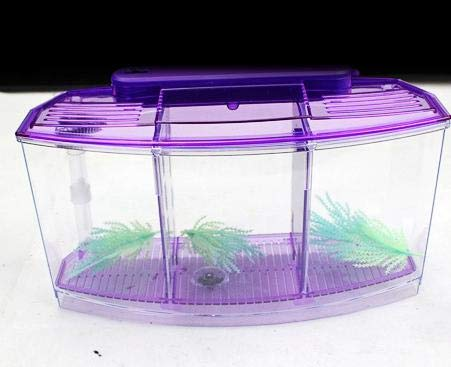 Acrylic Three Splits Aquarium Betta Fish Bowl Led Light Aquarium Hatchery Breeding Box Guppy Fish Tank Turtle Reptile House   bluee, 28x10x15cm