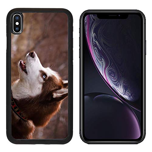 MSD Apple iPhone XR Case Aluminum Backplate Bumper Snap Case Image ID: 34884414 Picture of a Siberian Husky Head ()