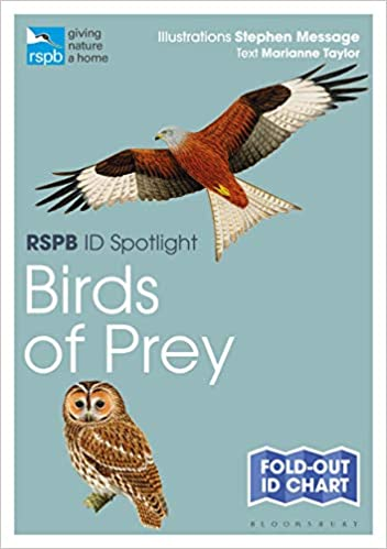 Rspb Id Spotlight Birds Of Prey Amazon Co Uk Taylor Marianne Message Stephen Books