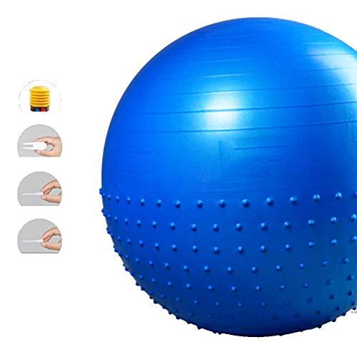 LieYuSport Ballon de Gym Swiss Ball,Sécurité Antidérapante Ballon de Yoga Ballon de Grossesse Ballon Fitness Ballon…