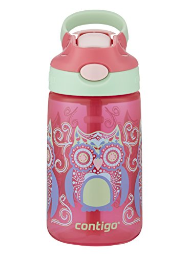 Contigo AUTOSPOUT Straw Gizmo Flip Kids Water Bottle, 14 oz., Sprinkles with Owl Parliament
