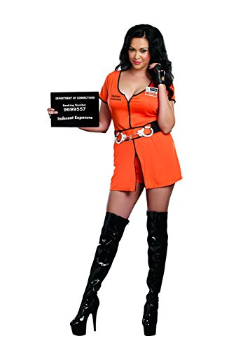 Dreamgirl Women's Plus-Size Locked Up Convict Costume, Orange, 3X/4X (Convict Lady Plus Size Costume)