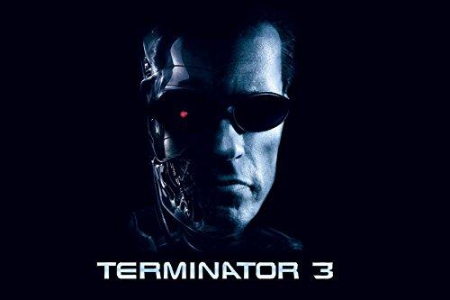 2003 Arnold Schwarzenegger Lunette Science Fiction Terminator 3 Tv Movie Film Poster Fabric Silk Poster Print 46846